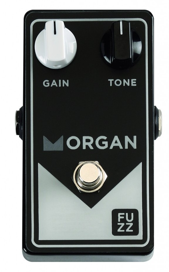Morgan Amplification Morgan Fuzz